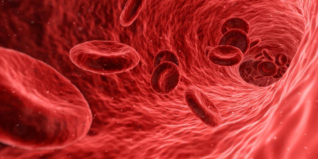 Arterie Blutbahn